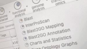 Blast2GO Module
