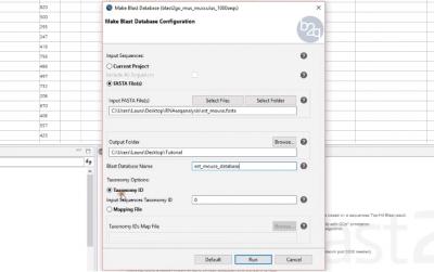 customdatabase
