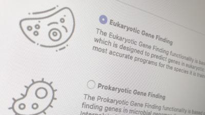 Gene Prediction Augustus OmicsBox
